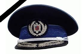 Image result for doliu politie